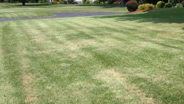core aeration, lawn aerating, aerating, bath ohio, copley ohio,