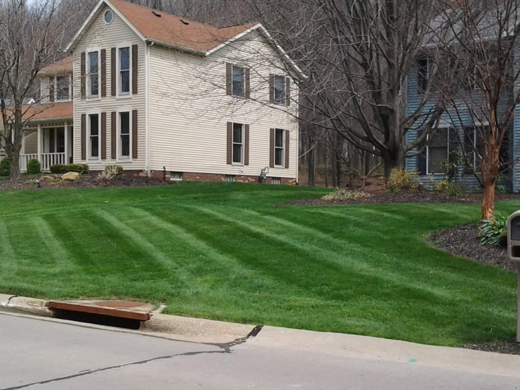 Lawn Care, Landscaping, Lawn Mowing, Mowing,