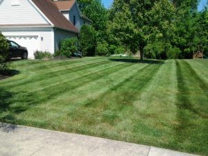 Lawn Mowing, Landscaping, Mowing, Lawn Care, Landscapes