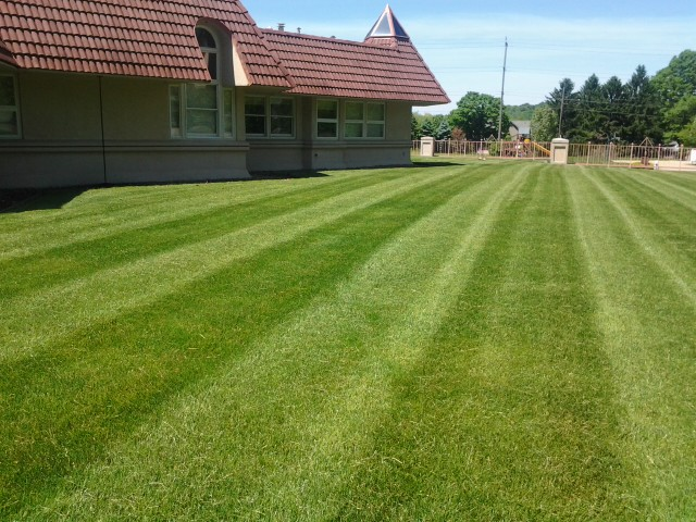 Lawn Care, Landscaping, Lawn Mowing, Mowing, Landscape Maintenance, contact us