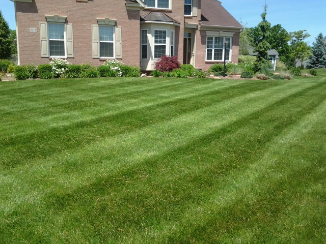 Barberton ohio, lawn care, lawn mowing, barberton oh, landscaper, lawn care provider, mowing service, 44203,