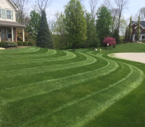 beautifully striped lawn in clinton ohio, 44216,