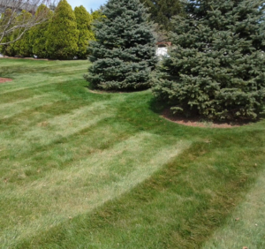 lawn mowing in cuyahoga falls oh,