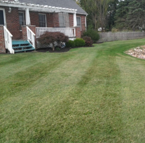 landscaping and lawn care in akron ohio,