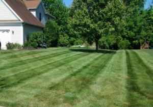 cutting grass, norton ohio, mowing, lawn care, lawn service, barberton ohio, jackson township oh, 44720,
