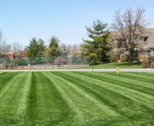 grass mowing, akron ohio, mowed grass, mowed lawn, core aeration service,