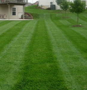 lawn mowing, barberton ohio, coventry ohio, green ohio, lawn care, lawn aeration,