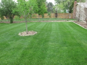 akron ohio, lawn care, landscaping, landscaper, lawn mowing, ellet, firestone, goodyear, aeration,