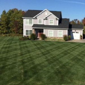 green grass, akron ohio, mowing, mowing business, stow ohio,