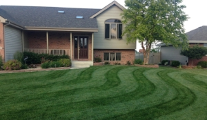 lawn stripes, edging, trimming, weed eating, weed whacker, akron ohio, fairlawn ohio,