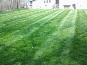 kenmore ohio, akron ohio, lawn mowing, lawn care, servicing lawns, portage lakes aeration, richfield ohio,