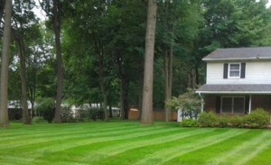 stripes, grass, akron, ohio, oh, mogadore, aerating, aeration, mowing, lawn,