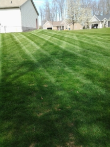 landscaping barberton ohio,