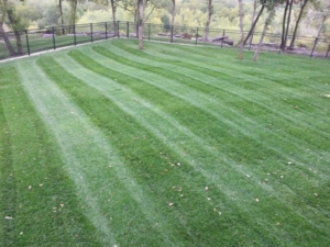 akron ohio, aeration, core aerating, aerated, summit county, springfield twp,