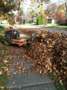 leaf plow, akron ohio, cleanups, leaves, barberton, norton, copley ohio,