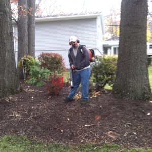 leaf blowing, akron ohio, clinton ohio, clean up, fall,
