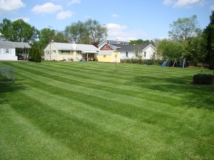 city lots, city mowing, akron ohio, 44303, 44314,