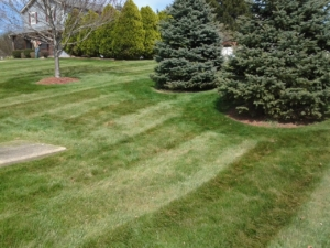 aeration, akron ohio, lawn care,