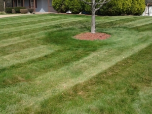 lawn mowing in akron ohio,