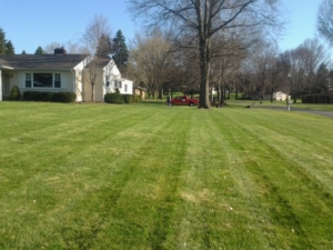 cuyahoga falls ohio, mowing, lawn care, landscaping company,