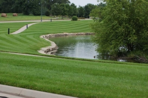 golf course quality, lawn care service, mowing company, lawn striping, professional mowing, quality cut, akron oh, 44306,