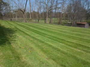 green ohio, 44685, mowing,