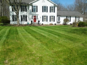 hudson ohio, 44256 lawn care, mowing,