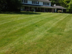 stan hywet lawn mowing,