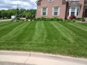 stan hywet, 44303, lawn care, mowing,