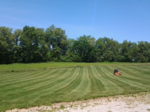 44319 core aeration, new franklin ohio, mowing,