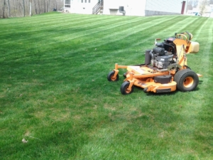 Lawn patterns, commercial equipment, Scag Vride, mowing service, lawn care, grass service, Green Ohio, 44685,