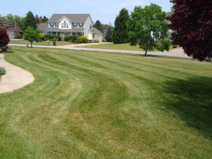 44301, firestone park, lawn care,