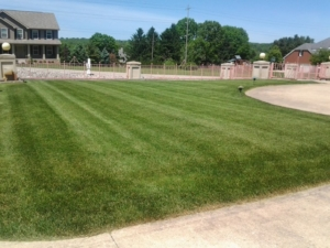 springfield twp ohio, 44312, lawn mowing,