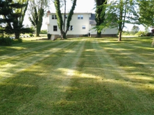clinton ohio landscaping bubsiness, 44216,