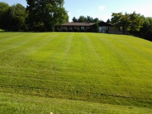 lawn cutting, grass cutting, mower, lawn maintenance, akron ohio, aerated, aerating,
