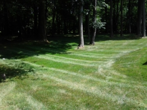 clinton ohio lawn aeration, 44216,