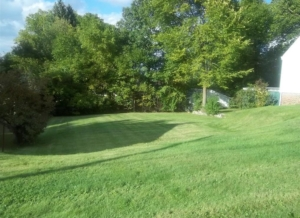 barberton ohio lawn mowing company, 44203,