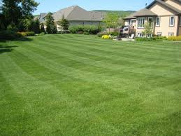lawn mowing akron ohio, aeration copley ohio, tallmadge ohio, mogadore oh, stow ohio,