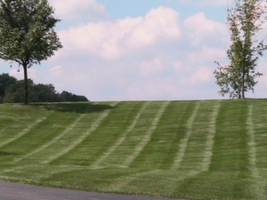 perfect stripes in cuyahoga falls oh, 44223,