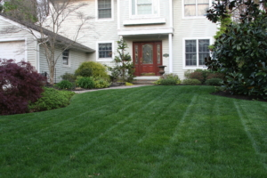 landscaper in akron ohio,
