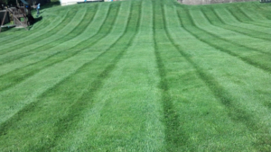 cuyahoga falls ohio lawn mowing service, 44221,