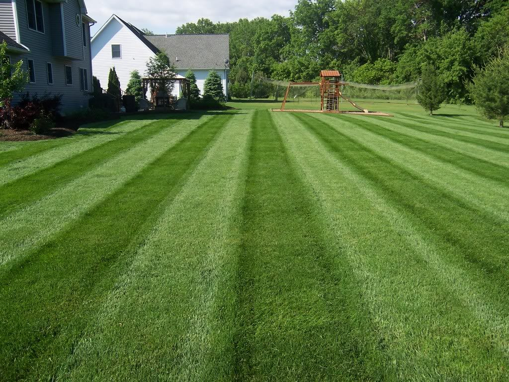 about 4 seasons services professional lawn mowing and