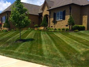 Lawn care, landscaper, lawn mowing, landscaping, mowing service, landscape service, mowing, cuyahoga falls ohio, cuyahoga falls oh,