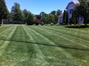 Lawn Care, Landscaping, Lawn Mowing, Lawn Stripes, Akron Oh,
