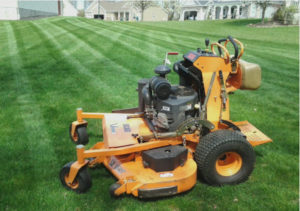 Mowing, Landscape, Landscaping, Lawn Care, Lawn Mowing,