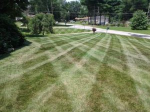 akron oh, summit county, landscaping, lawn care, mowing service, lawn mowing, lawn mowing company, lawn care company, ohio, landscaper, mowing, grass mowing, cut grass, lawn care service, lawn mowing service, grass,