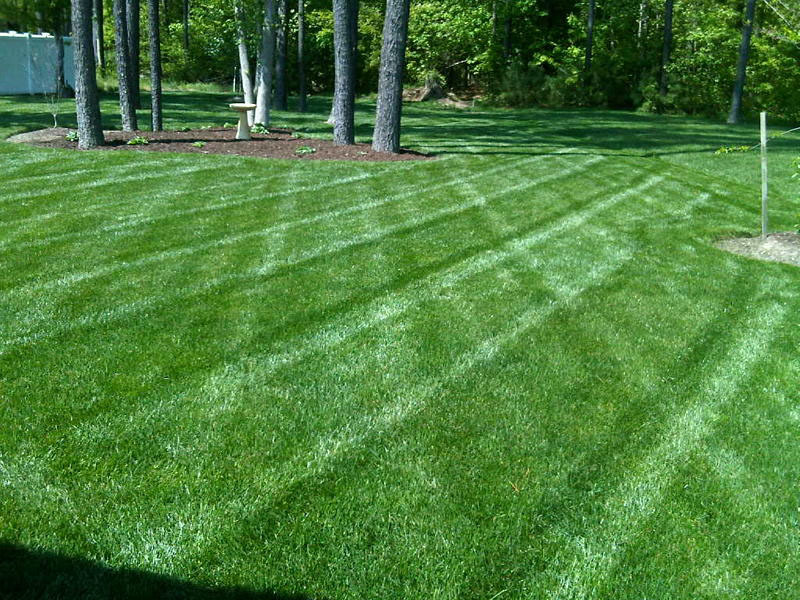 Lawn service akron oh 330 620 6200 4 seasons services for Landscaping services