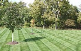Lawn care, landscaper, 44319, lawn mowing, landscaping, mowing service, landscape service, mowing, new franklin oh, new franklin ohio, lawn maintenance,