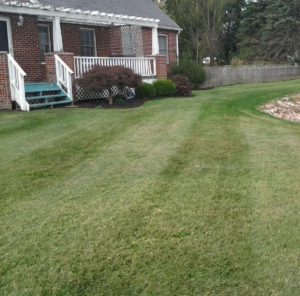 Lawn care, landscaper, lawn mowing, landscaping, mowing service, landscape service, mowing. norton ohio, norton oh,