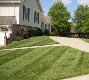Lawn care, landscaper, lawn mowing, landscaping, mowing service, landscape service, mowing , springfield township oh, springfield township ohio, springfirled oh,